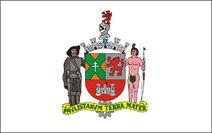 Bandeira de São Bernardo do Campo