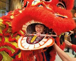 Evan's Chinese New Year