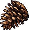 Item Snow Pine Cone