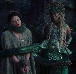 Ursula belle