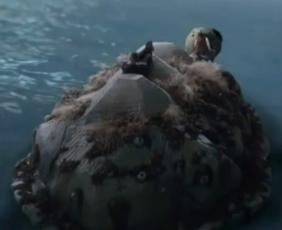 Mock Turtle1