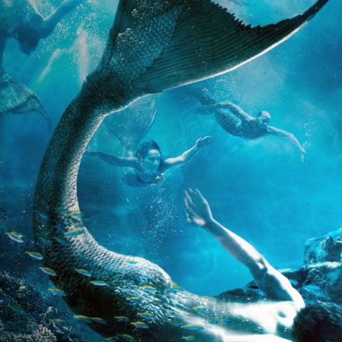 File:MermaidCanonsTaken.png