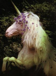 UnicornWiki