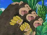 Monkeytrio