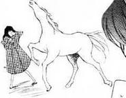Kanoya and the horse