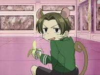 Mouseshiro