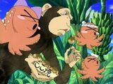 Monkeyoctopi