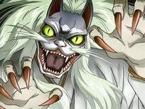 Catmonster