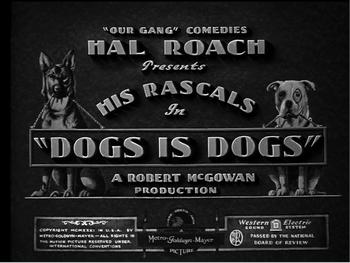 Dogsisdogs