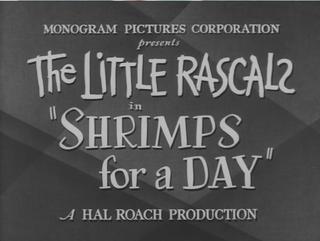 Shrimpsforadaytitle