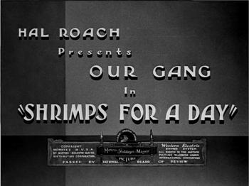 Shrimpsforaday