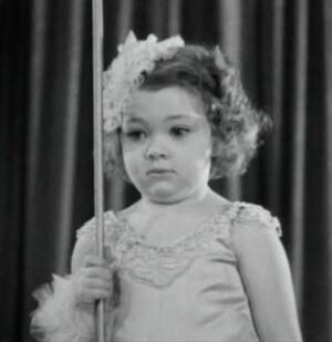 Daisy Dimple
