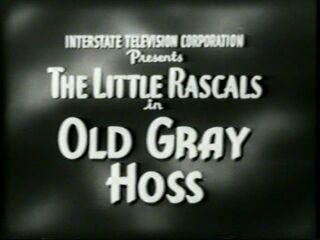 Ol' Gray Hoss 1928