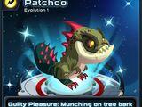 Patchoo