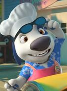 Hank chef