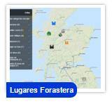 Lug-Forastera-tn