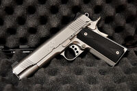 Kimber Stainless TLE II