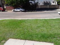 Lawn, part 1