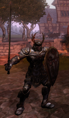 Fallen Knight front