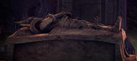Inferna sarcophagus
