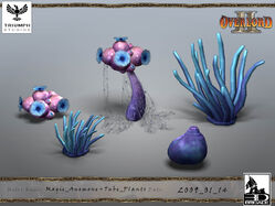 Magic Anemone and Tube Plants