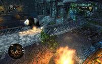 Captive Panda Everlight Facility
