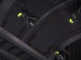 Восьминогий кинжалопаук-убийца