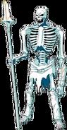 Skeleton Databook 01