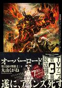 Overlord Volume 13 Alt