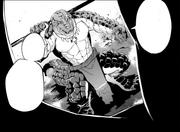 Zenberu Manga 001