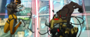 Doomfist and Tracer fight