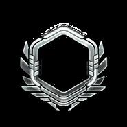 Серебро-71-80-Уровень
