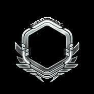 Серебро-61-70-Уровень