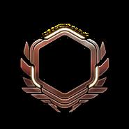 Бронза-71-80-Уровень