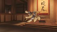 Genji nomad shuriken