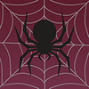 Pi spider