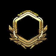 Золото-61-70-Уровень
