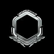 Серебро-41-50-Уровень