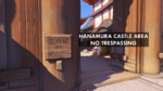 Hanamura translation 3