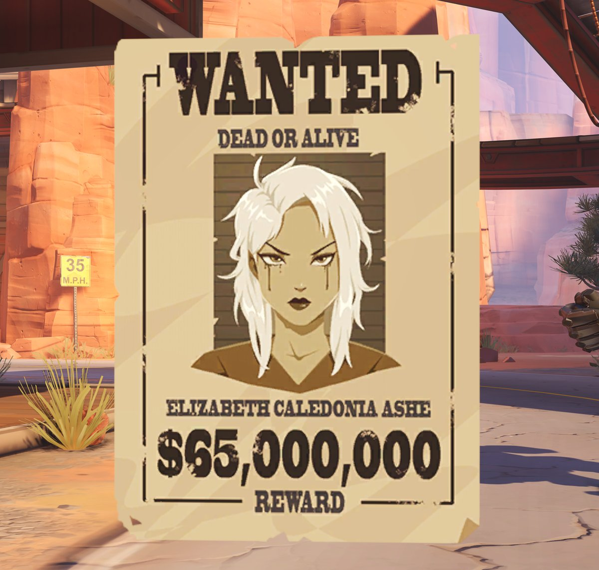 Wanted Spray