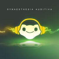 SynAud Cover