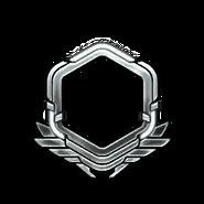 Серебро-51-60-Уровень