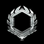 Серебро-91-100-Уровень