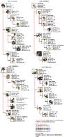 Struthio mutation chart by apthanna-d753xm4