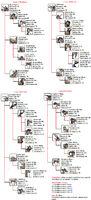 Rangifer mutations chart by naonical-d7kcckl