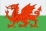 Wales-flag-100