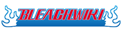 Bleach wordmark