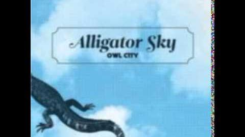 Owl City ft. Big Boi - Alligator Sky