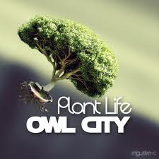 Plant Life.