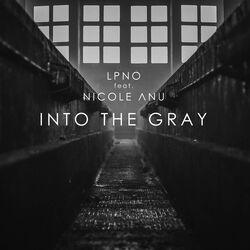 Into the Gray LPNO
